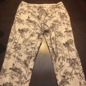 Talbots trousers size 8 with birds